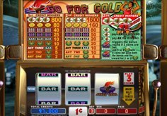 Go For Gold Pokie Logo