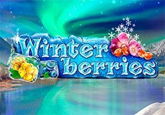 Winterberries Pokie Logo