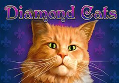 Diamond Cats Pokie Logo