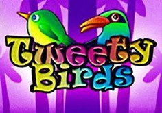 Tweety Birds Pokie Logo