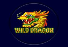 Wild Dragon Pokie Logo
