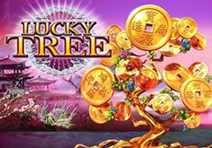 Lucky Tree Pokie Logo