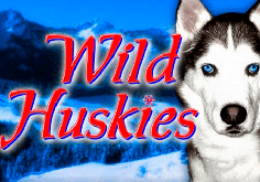 Wild Huskies Pokie Logo