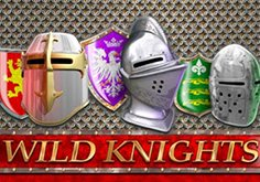 Wild Knights Pokie Logo