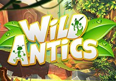 Wild Antics Pokie Logo