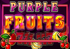 Purple Fruits Pokie Logo