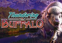 Thundering Buffalo Pokie Logo