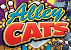 Alley Cats Pokie Logo