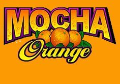 Mocha Orange Pokie Logo