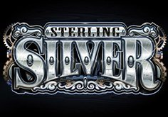 Sterling Silver Pokie Logo