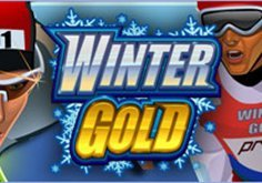 Winter Gold Pokie Logo