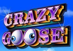 Crazy Goose Pokie Logo