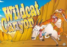 Wildcat Canyon Pokie Logo