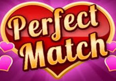 Perfect Match Pokie Logo