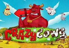 Crazy Cows Pokie Logo