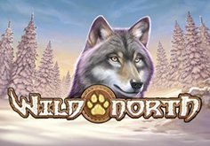 Wild North Pokie Logo