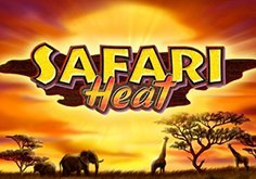 Safari Heat Pokie Logo