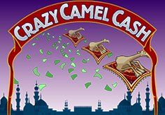 Crazy Camel Cash Pokie Logo