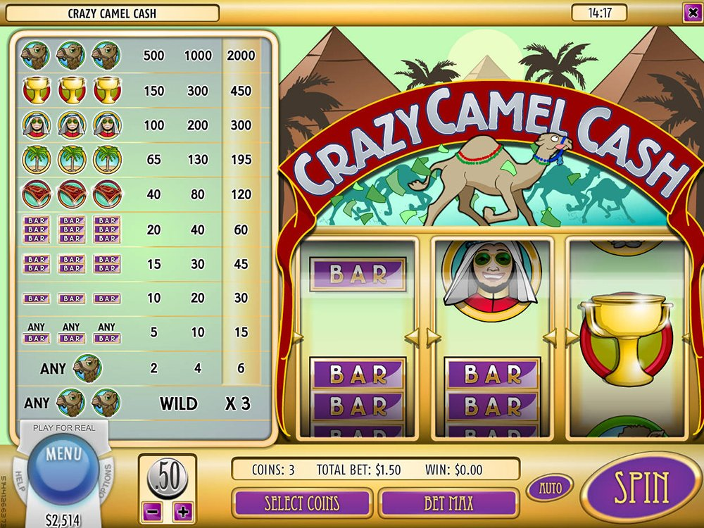 Crazy Camel Cash Pokie