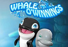 Whale O 8217 Winnings Pokie Logo