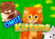 Omg Kittens Pokie Logo